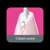 3 Steam Setting