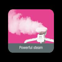 Powerful Garment Steamer